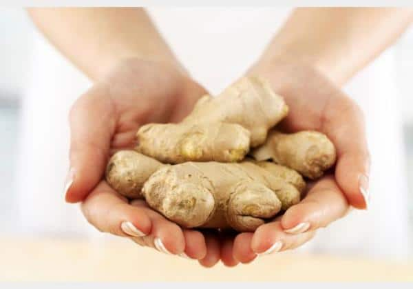 Ginger Can Lower Cholesterol Levels