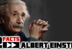 Albert Einstein Facts