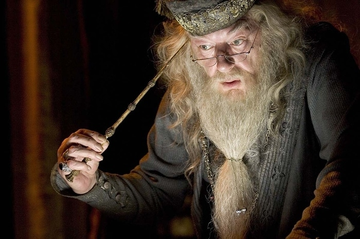 Professor Dumbledore is Gay